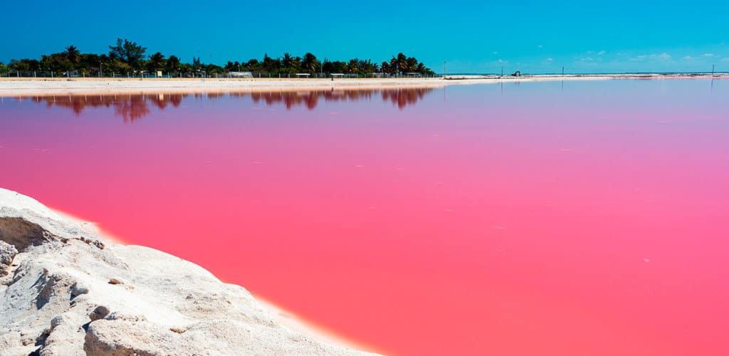 Pinkes Wasser in Las Coloradas Title