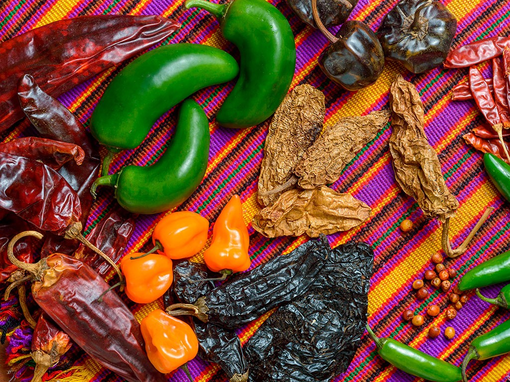 Ein Tisch voller Chilis