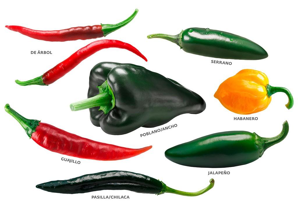 Bezeichnungen mexikanischer Chilis